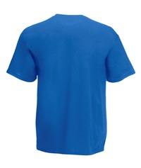 61-066-0 - VALUEWEIGHT V-NECK T